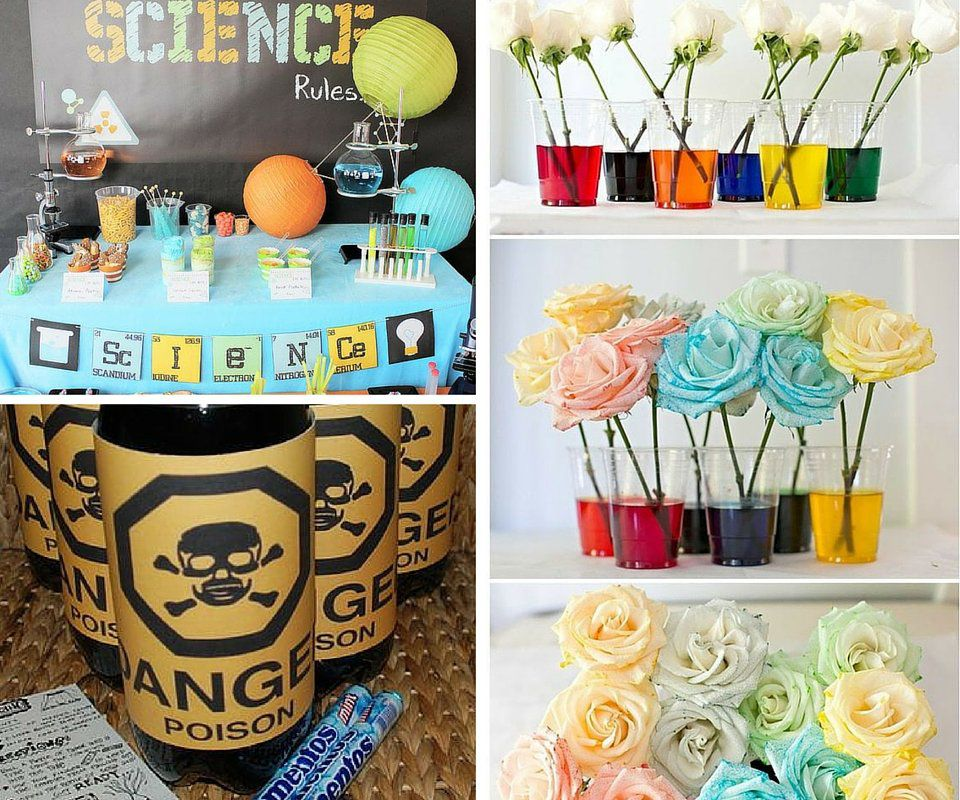 Decorating Food Ideas Science Party Decor