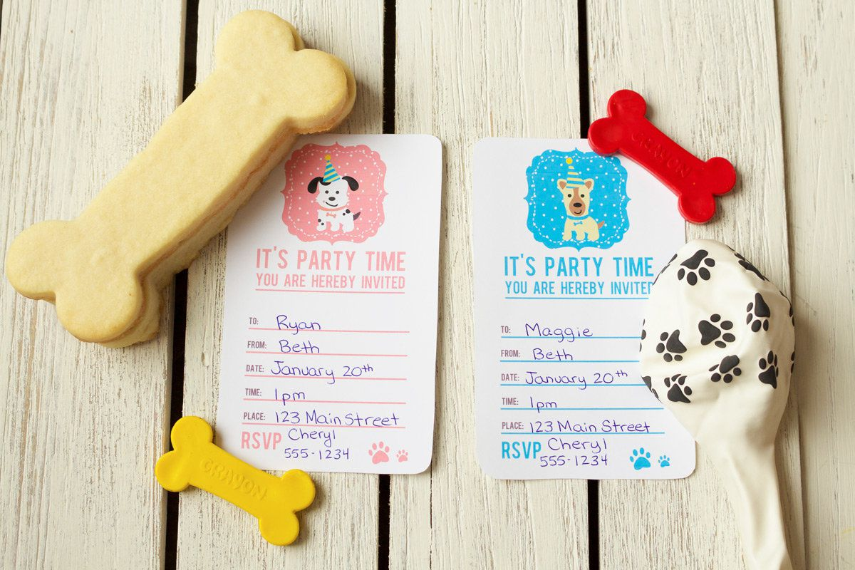 Dog Party Ideas | Puppy Birthday Party Ideas at Birthday in a Box