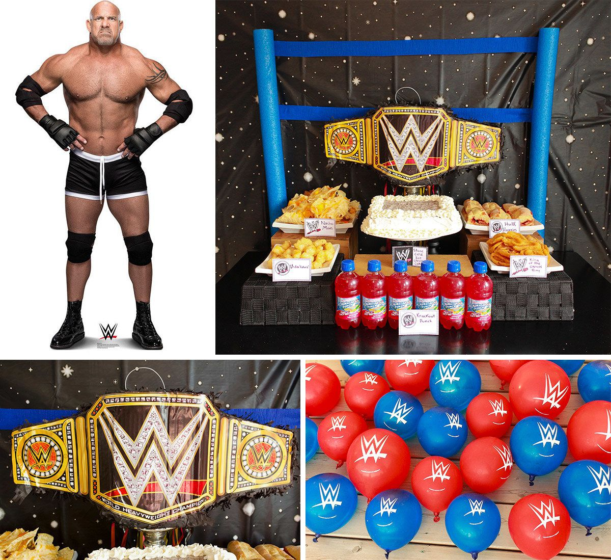 Wwe Wrestling Party Ideas Birthday In A Box