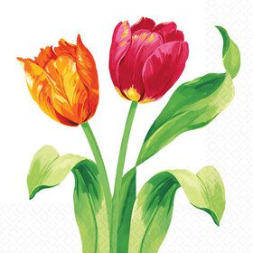 Bright Tulips Beverage Napkins (16 Pack)