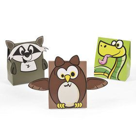 Camp Adventure Favor Boxes (12)