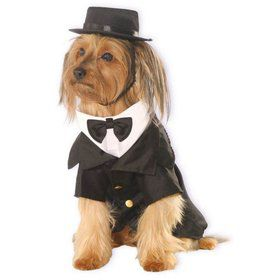 Dapper Dog Pet Costume Small