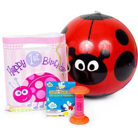 First Birthday Ladybug Favor Kit