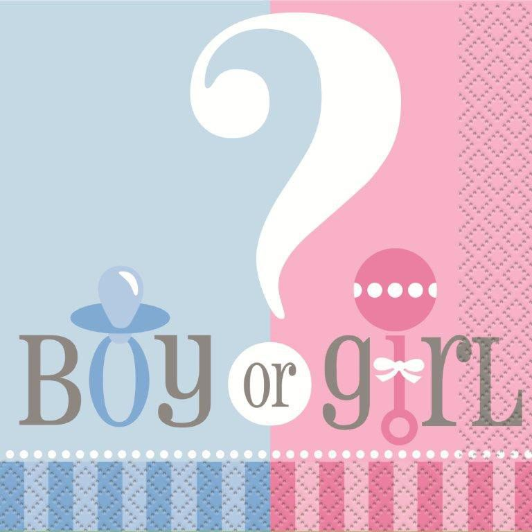 Gender Reveal Beverage Napkins (24 Pack) BB47381