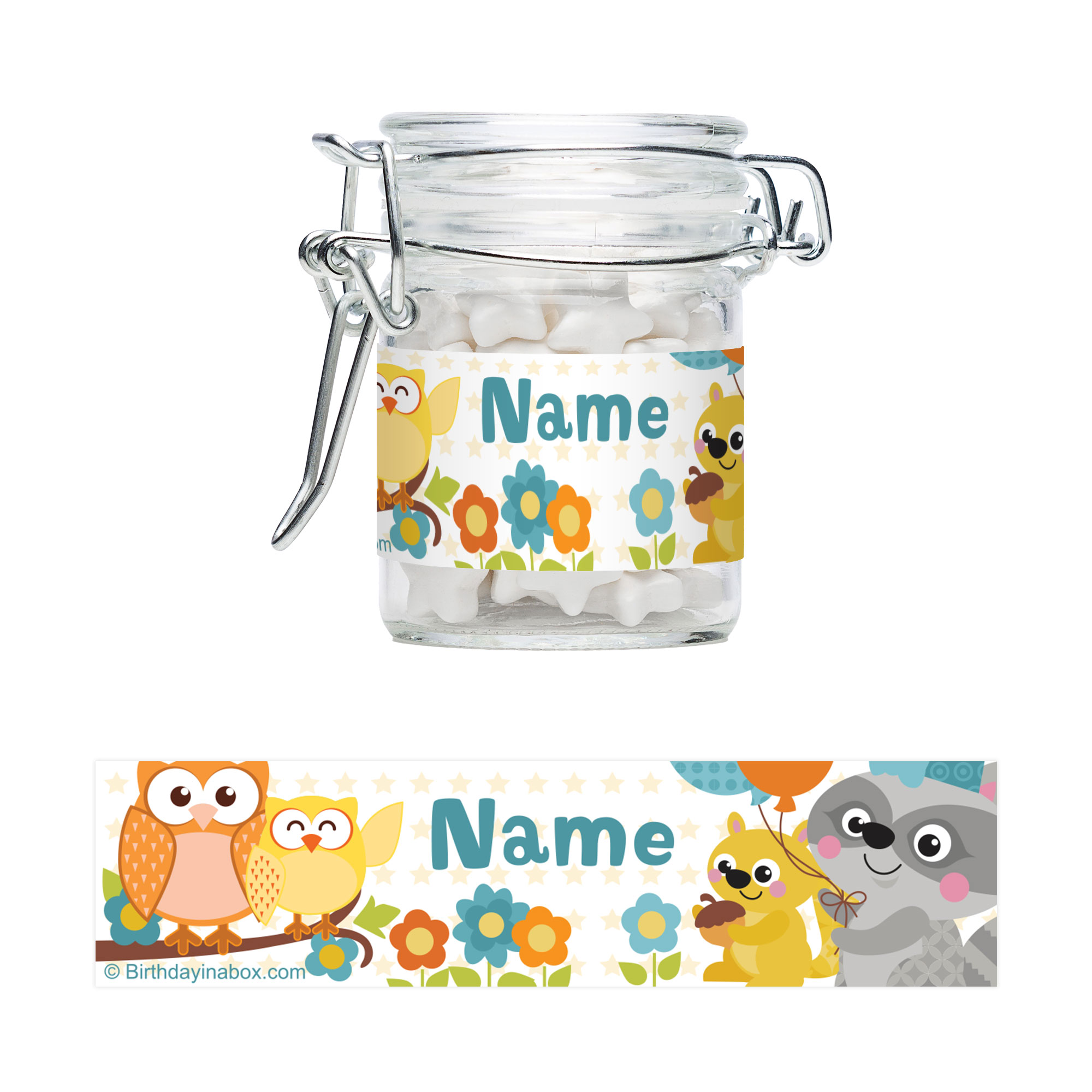 Nature Blue Personalized Glass Apothecary Jars (10 Count) - Party Supplies BB1459AJ