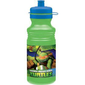 Ninja Turtles Drink Bottle (Each)
