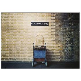 "Platform 9 3/4 Backdrop 61"" x 43"""
