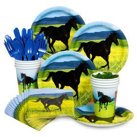 Pony Birthday Party Standard Tableware Kit Serves 8