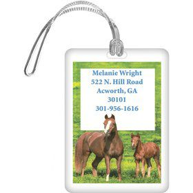 Pony Party Personalized Luggage Tag (each)