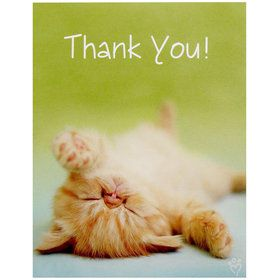 Glamour Cats Thank-You Notes by Rachael Hale (8)