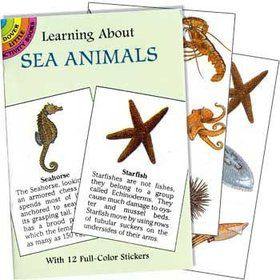 Sea Animals Sticker Book (each)