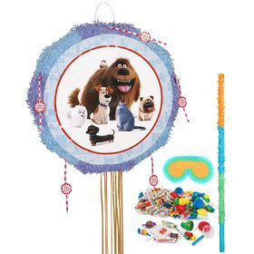 Secret Life Of Pets Pinata Kit