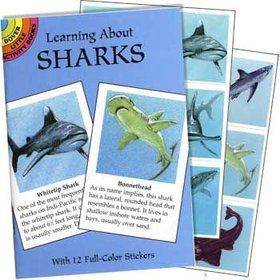 Shark Sticker Fact Book (each)