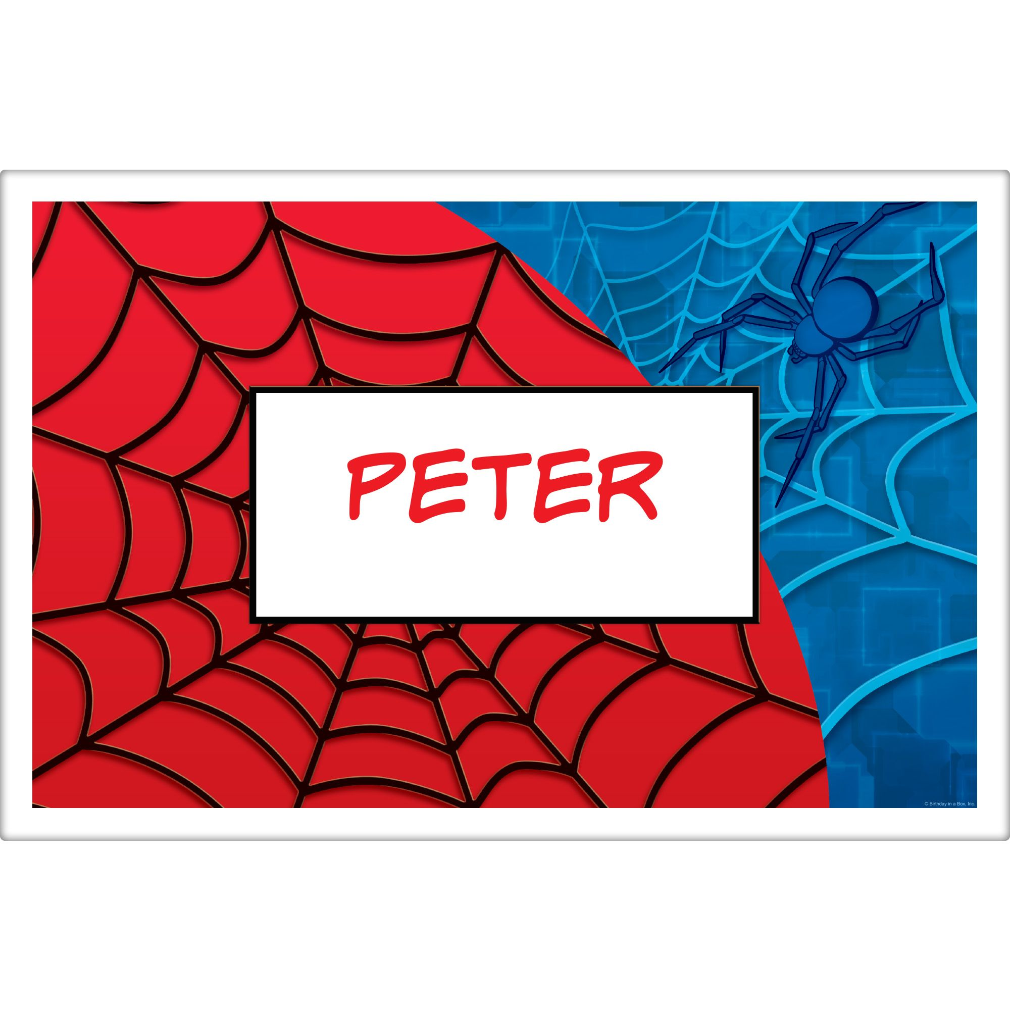Spider Personalized Placemat (each) - Party Supplies BB016146
