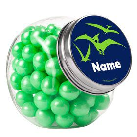 The Friendly Dinosaur Personalized Plain Glass Jars (12 Count)